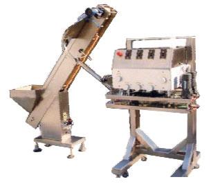 HBXG-120项目直线式旋盖机